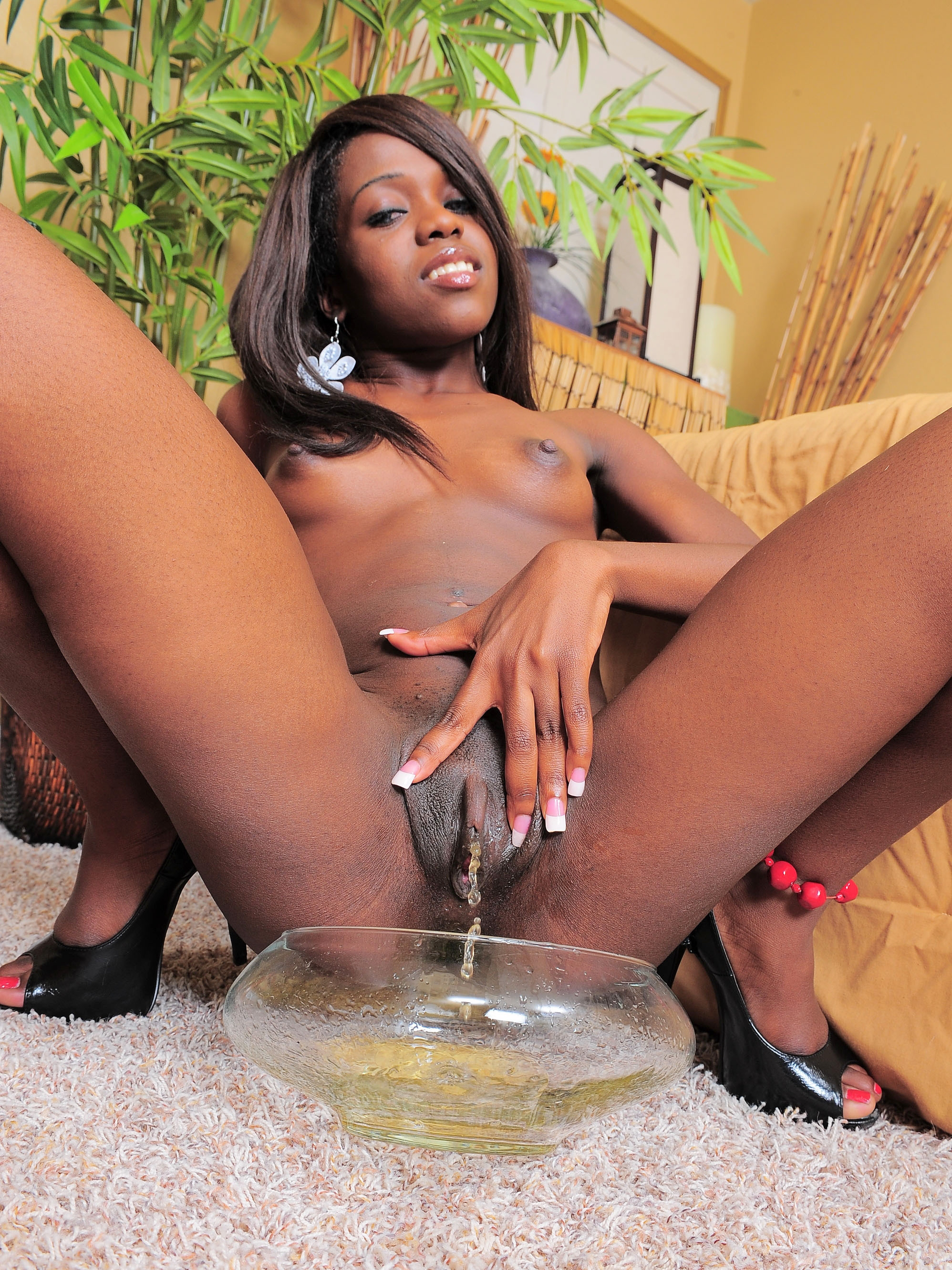 black-piss-porn-galleries-girls-palms-suites