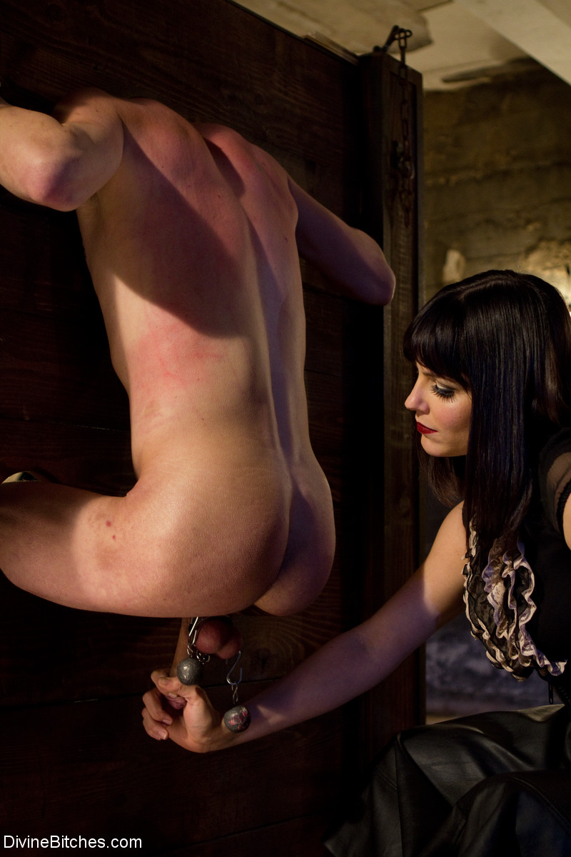 Free femdom pictures bobbi starr