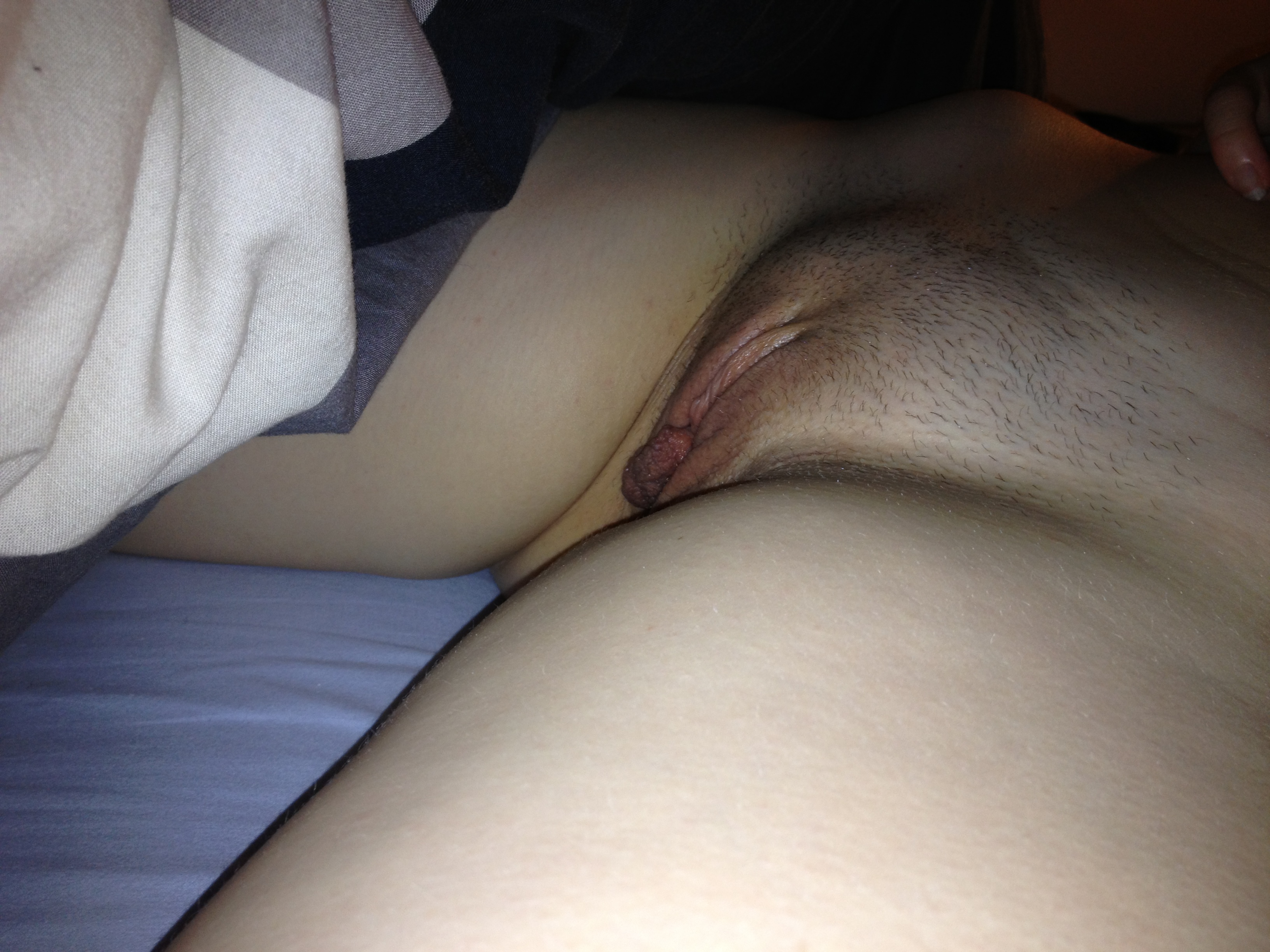 pantyhose companies in maryland