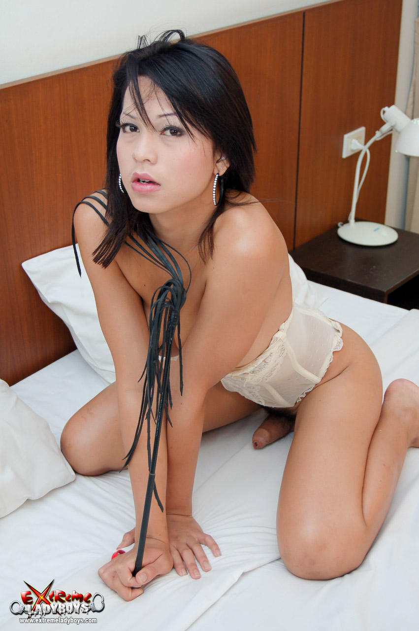 ladyboy candy Asian