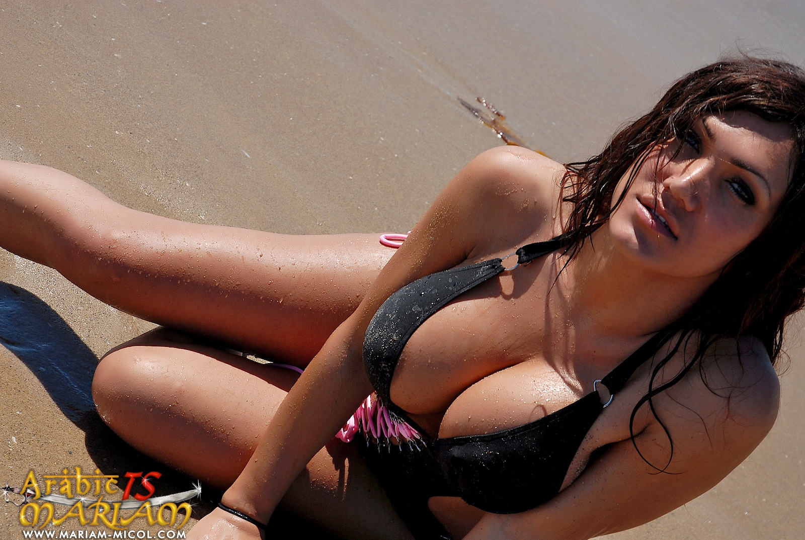 pictures showing for arab shemale beach - www.tophardcoreporn