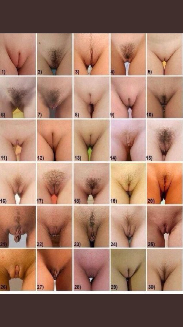 all types of pussy pics