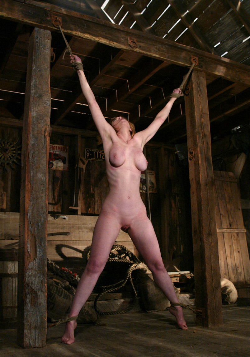 Nude girls strung up bdsm