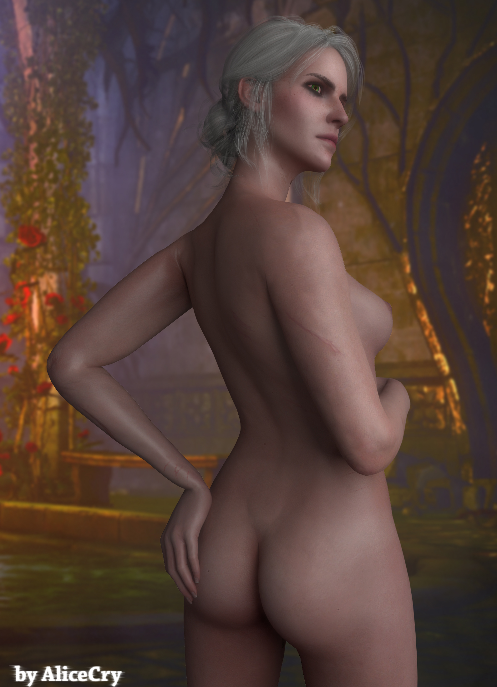 The witcher 3 nudes of girls erotica video