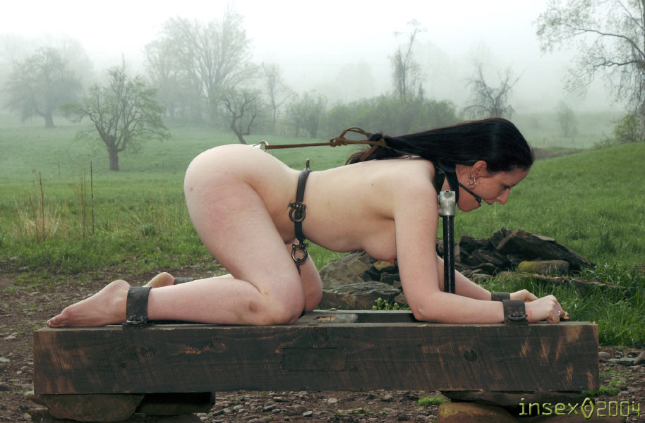 bdsm girls abducted
