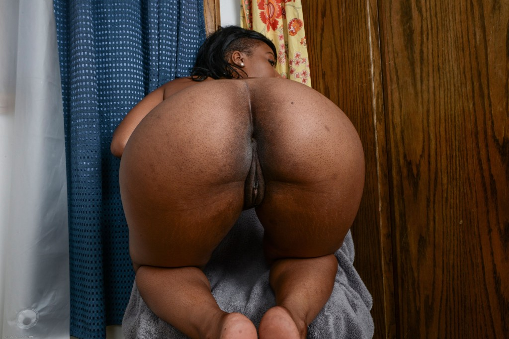 Ebony ass and pussy