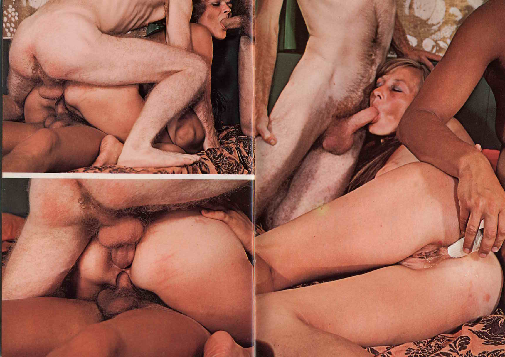 Redhead hairy bush black dick