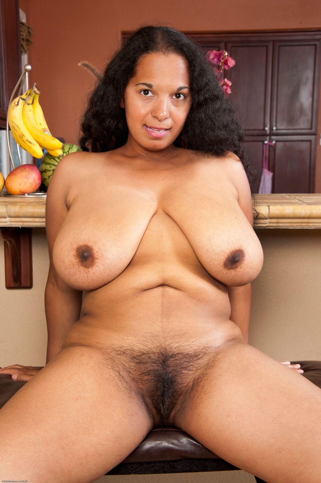 Chubby hairy ebony