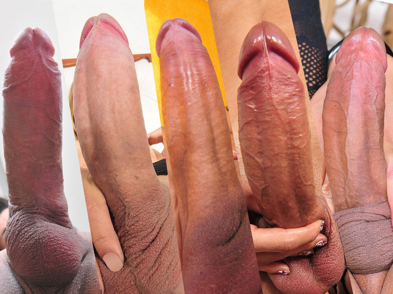 Beautiful hard cock dick