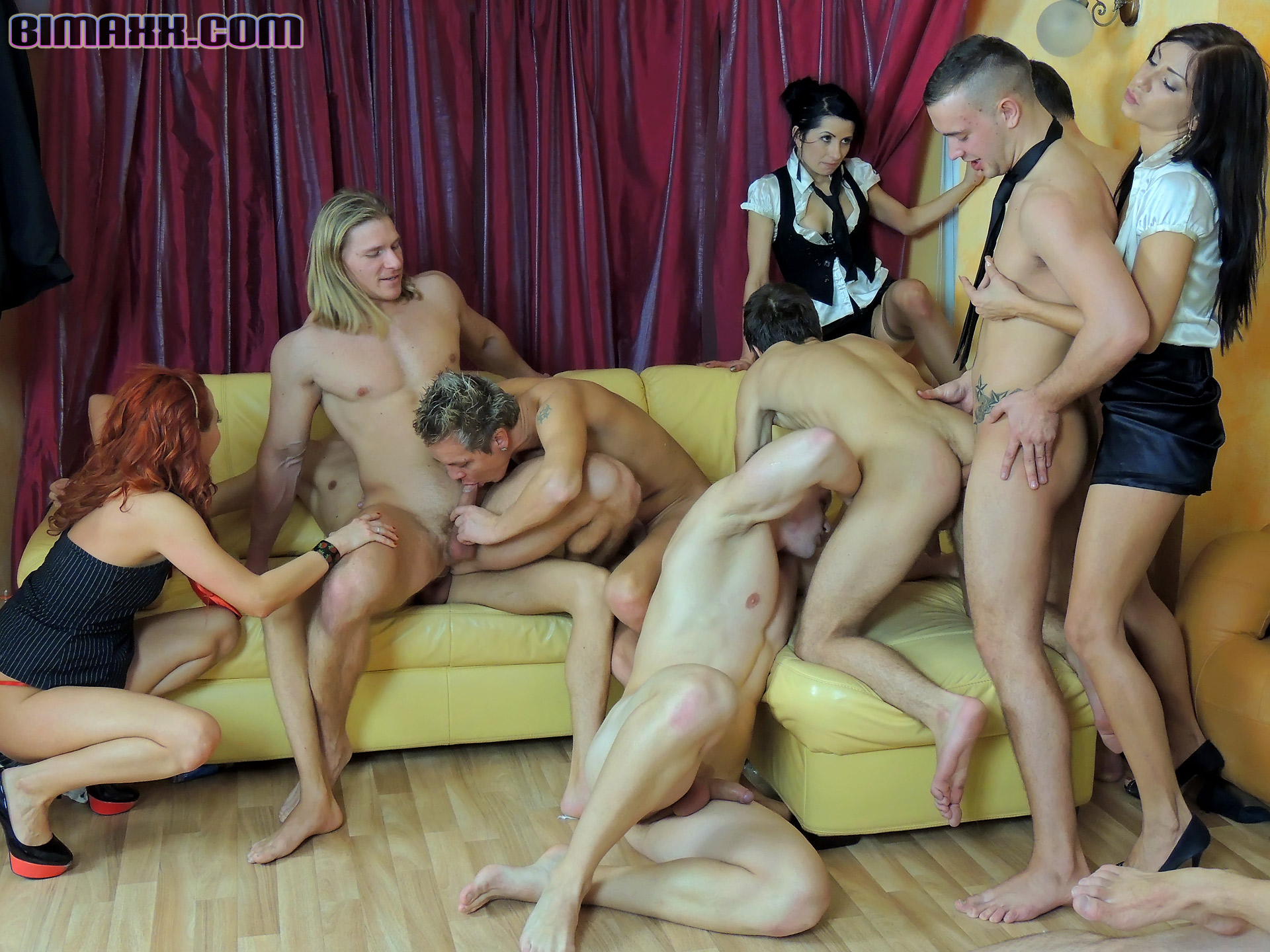Bisexual Party Porn