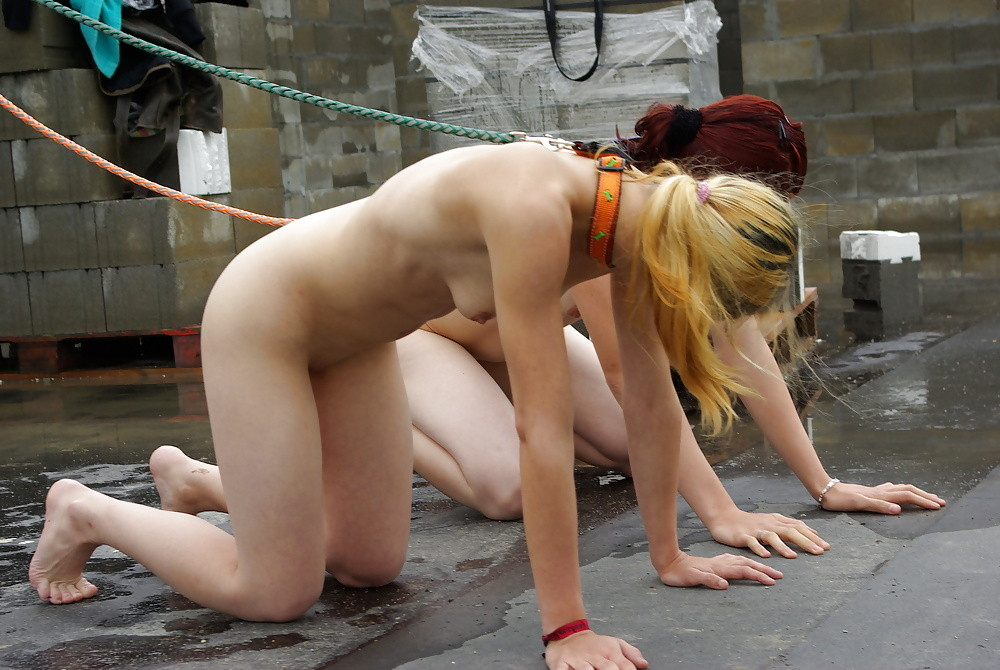 Nude girl auditions in leash porn gif