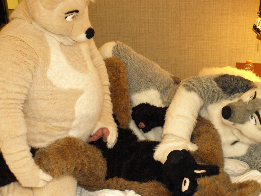 furry group orgies - furry orgy
