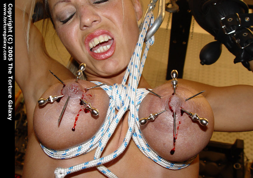 Women hung by meathooks in her tits