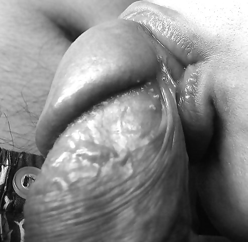 Are not black and white blowjob pics