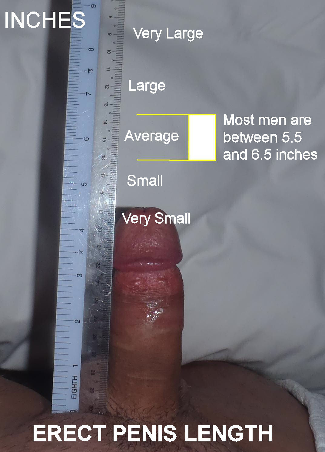 Guys comparing penis size