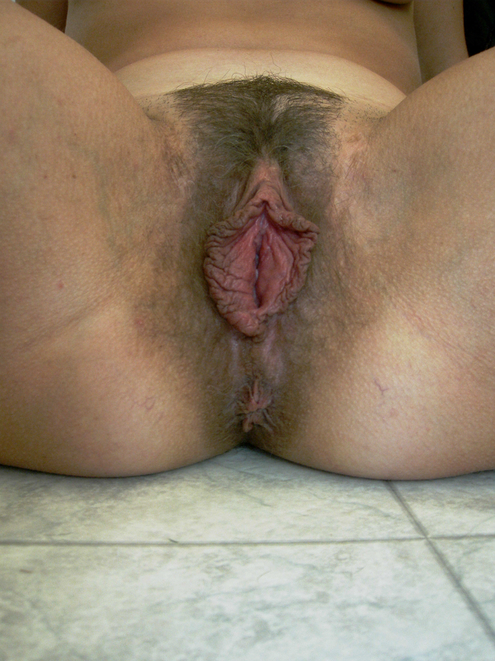 huge-hairy-labia Hairy