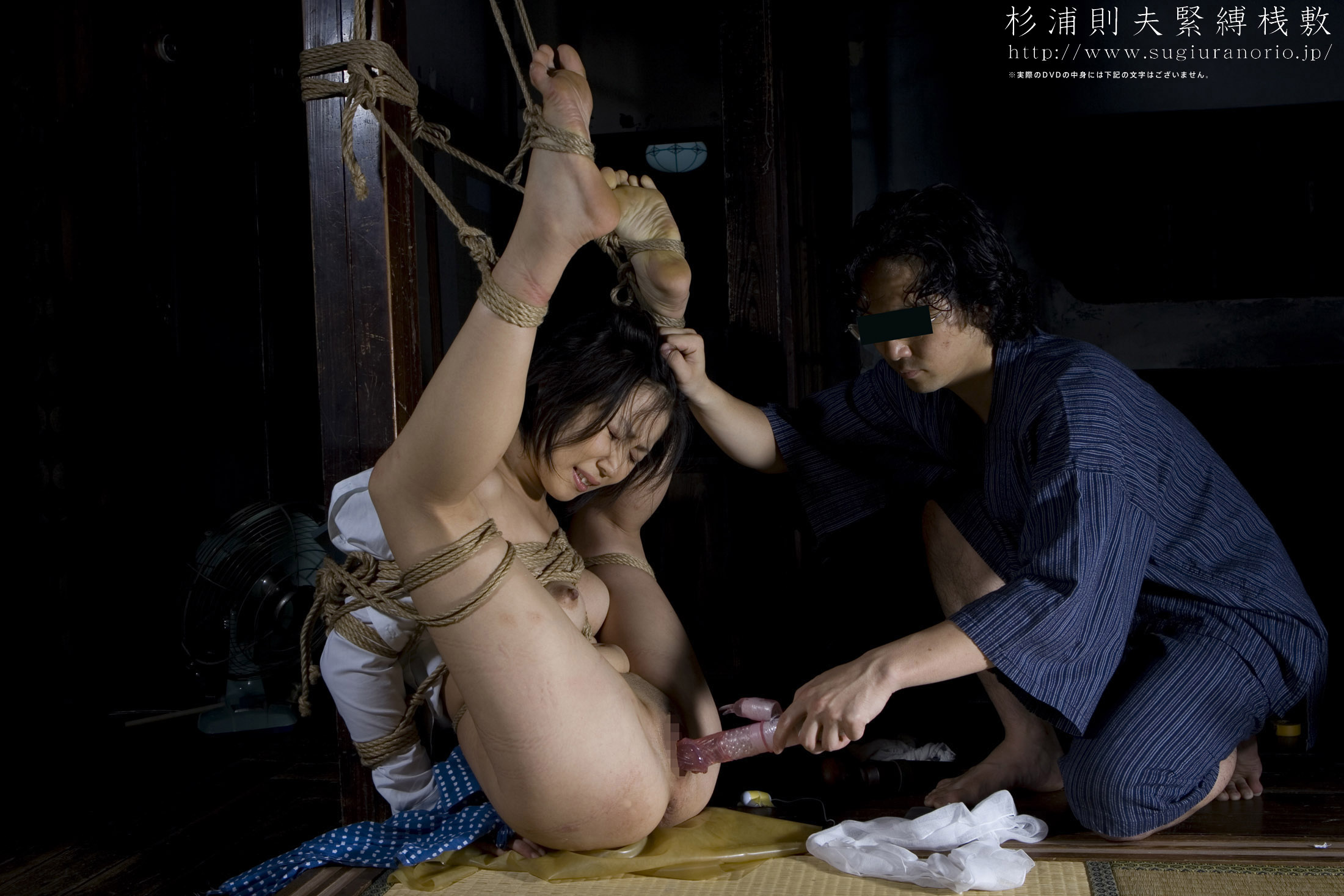 Japanese Bondage Photo 2