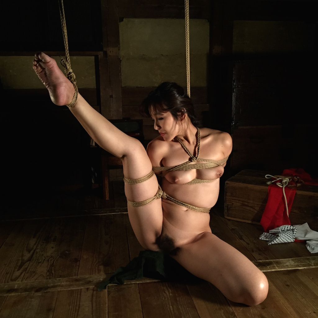 Art video japanese dvd bondage enema 1774 apologise, but
