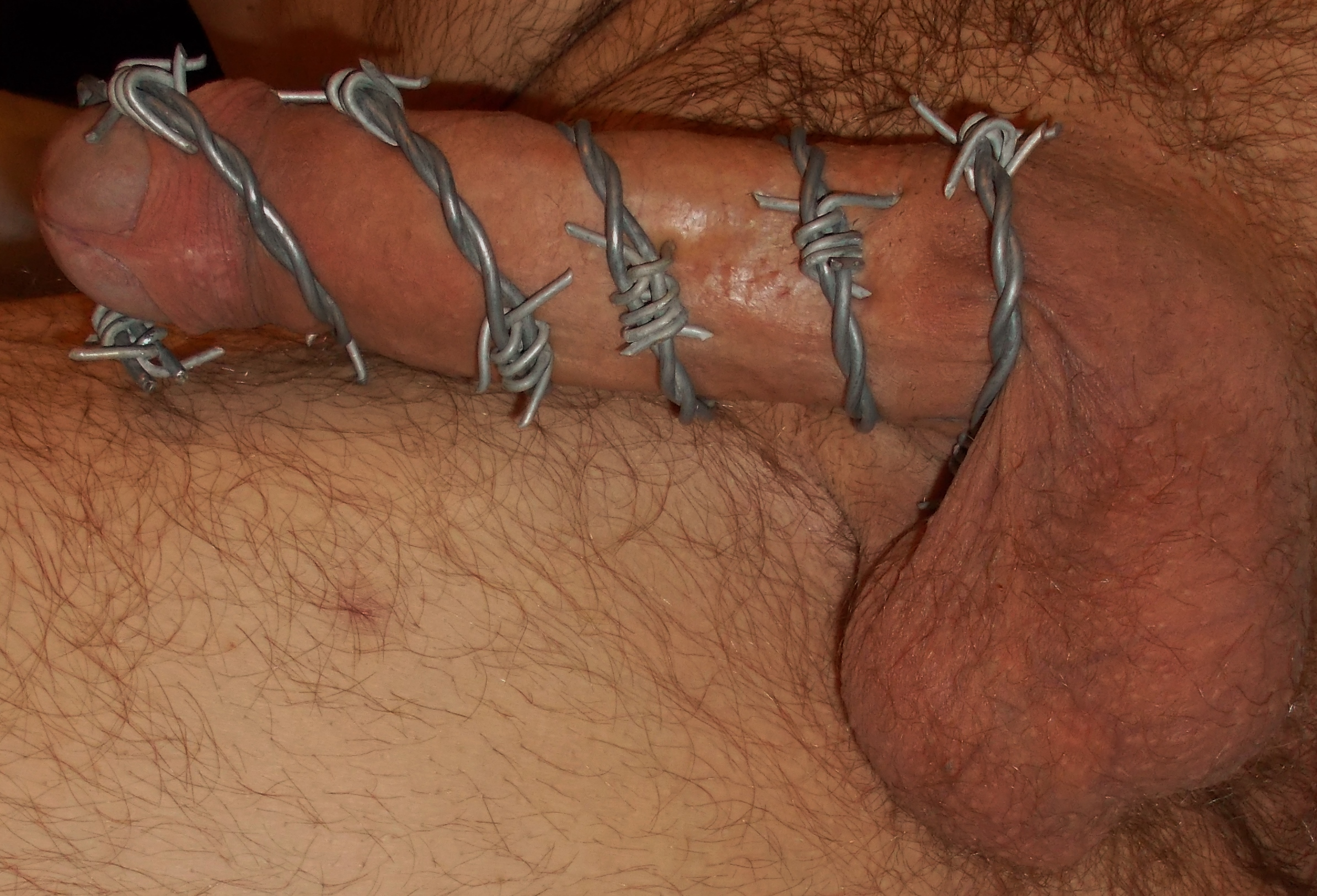 cock and ball wiring