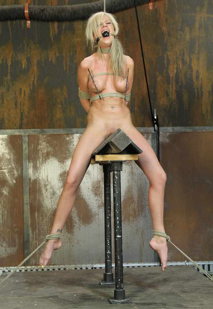 simply excellent phrase christy canyon domination nation 2 torrent something is. Now all
