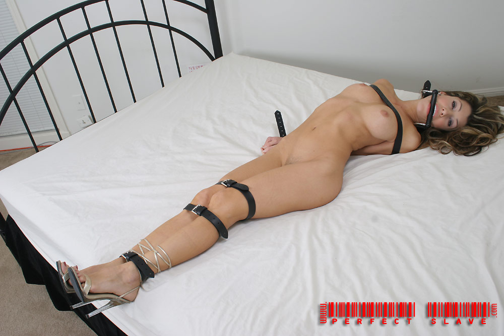 Bondage Man Porn Videos