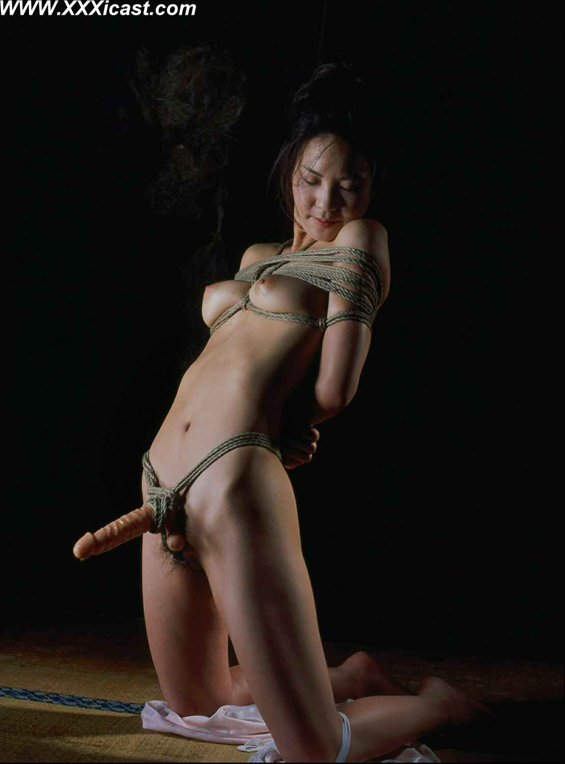 Incredible want bdsm bondage japanese this