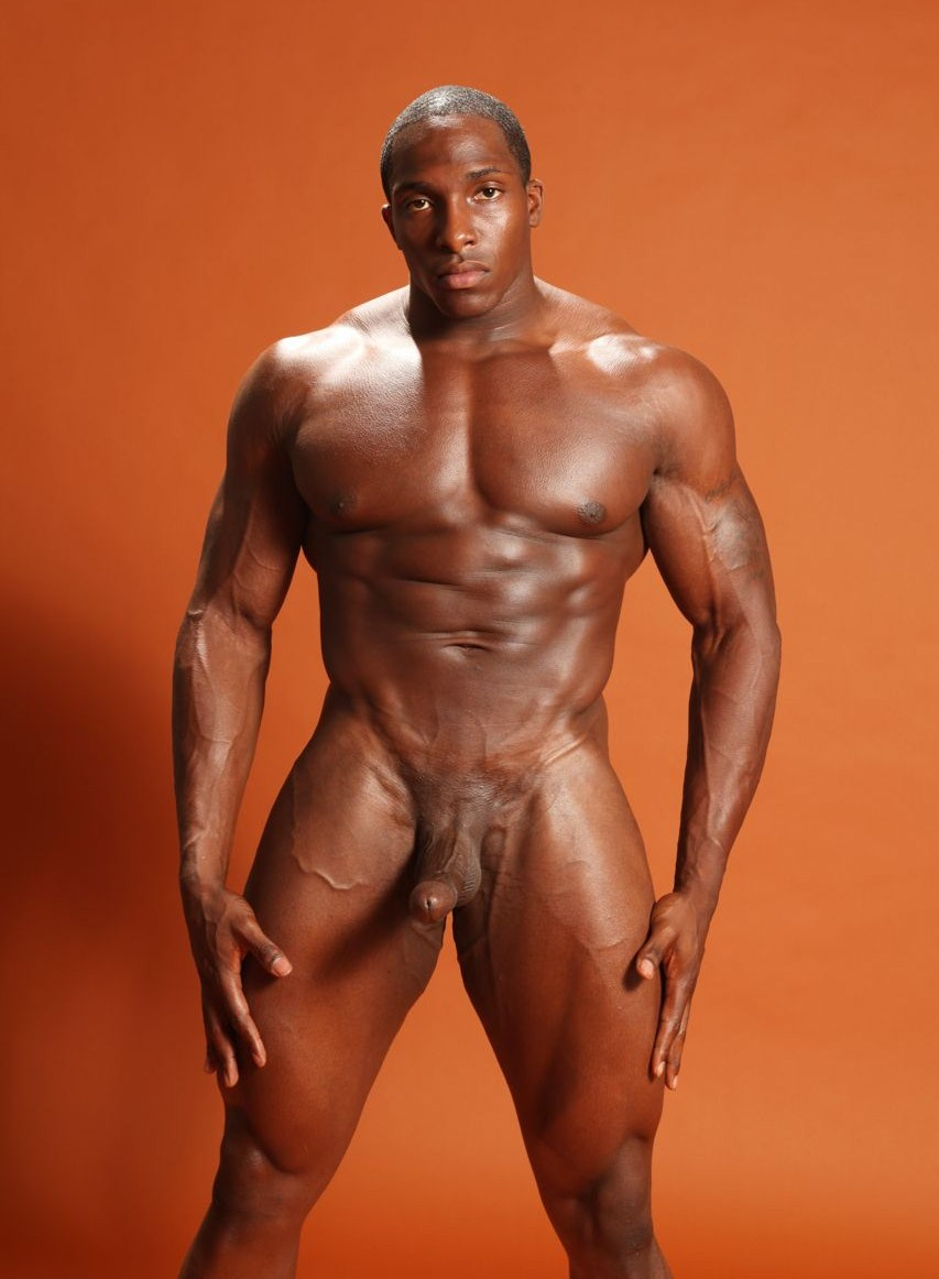 Ebony male nude models