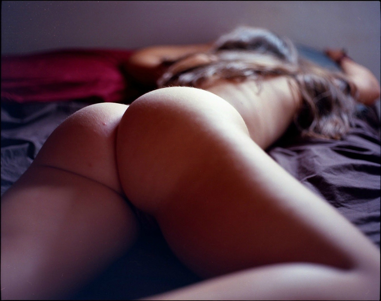 Asses of All Kinds